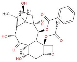 Picture of 10-Deacetyl Baccatin III