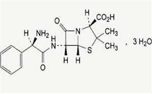 Picture of Ampicillin Anhydrous